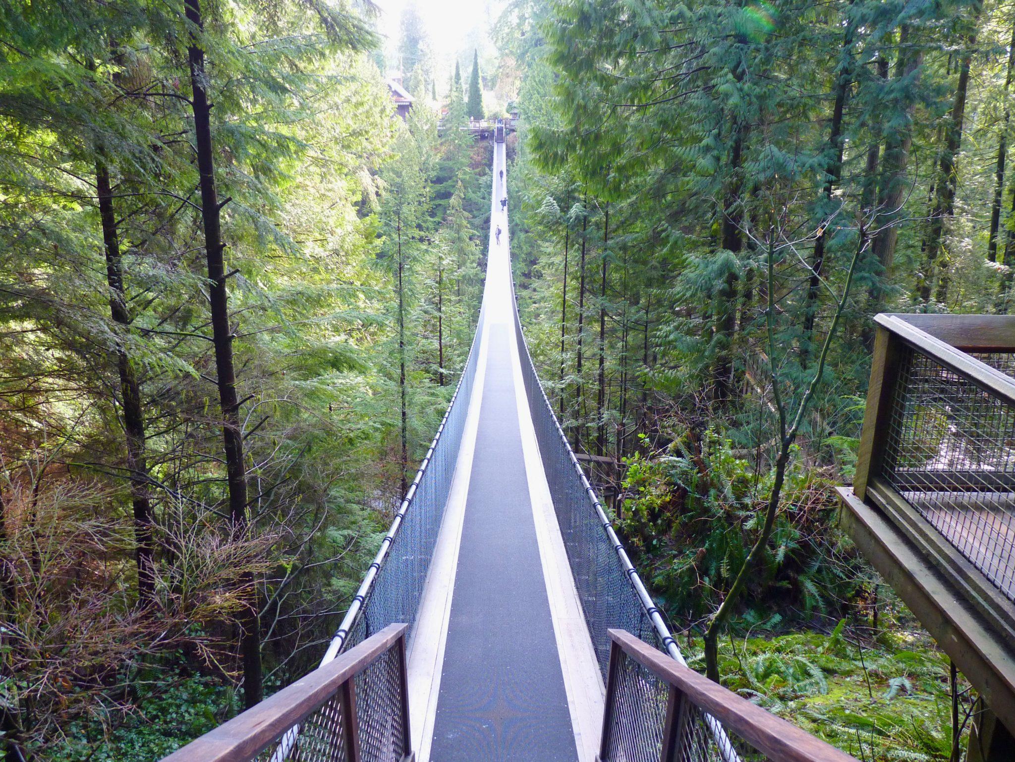 Bridge 03 Capilano Suspension Bridge Park Vancouver Canadá Mundo Indefinido