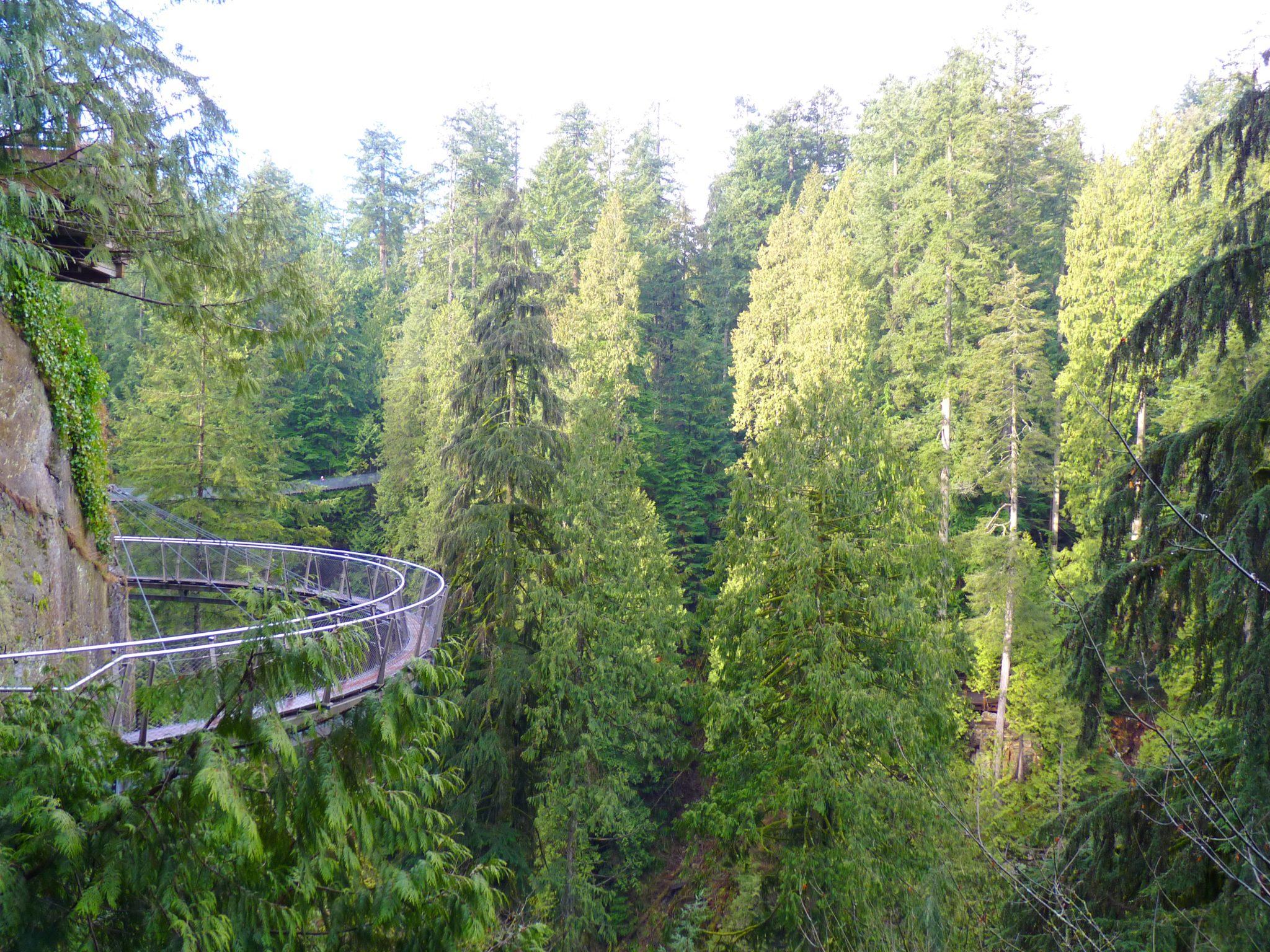 Cliffwalk 02 Capilano Suspension Bridge Park Vancouver Canadá Mundo Indefinido