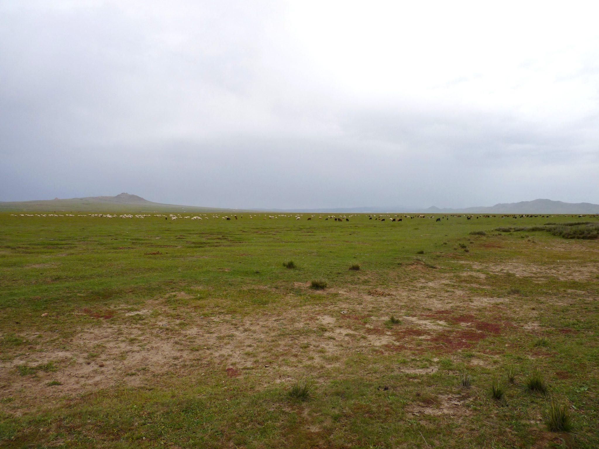 Estradas Mongólia 02 Mundo Indefinido